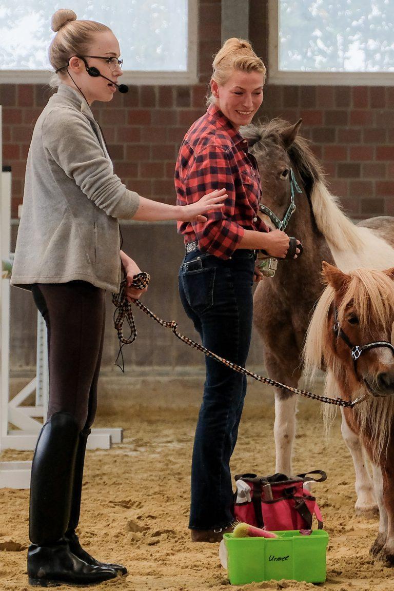 Mensch am Pferd - Team